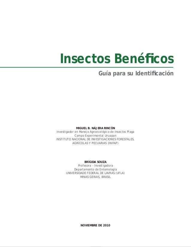 Insectos beneficos najeray_souza Slide 2
