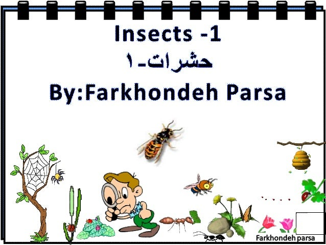 """Insects «-1  &  i. ... c""""'alJ. ».a. n By: Farkhondeh Parsa   M,   Farkhondeh arsa"""