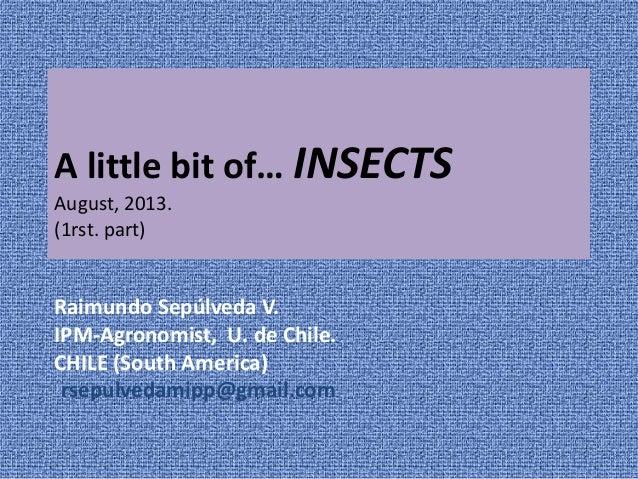 A little bit of… INSECTS August, 2013. (1rst. part) Raimundo Sepúlveda V. IPM-Agronomist, U. de Chile. CHILE (South Americ...