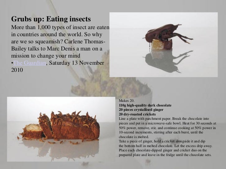 Insects as human food Slide 2