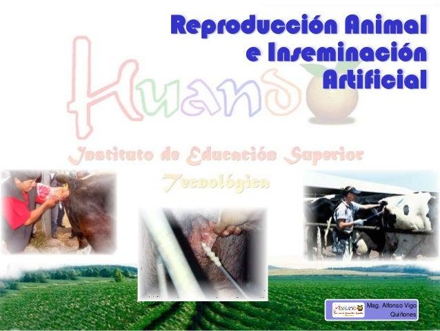 Reproducción Animal e Inseminación Artificial Mag. Alfonso Vigo Quiñones