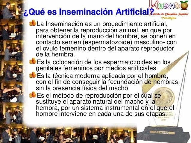 ¿Qué es Inseminación Artificial? La Inseminación es un procedimiento artificial, para obtener la reproducción animal, en q...