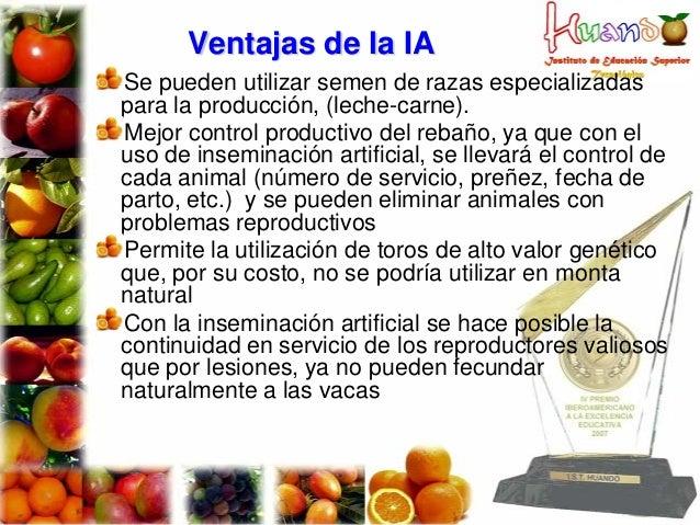 Ventajas de la IA Se pueden utilizar semen de razas especializadas para la producción, (leche-carne). Mejor control produc...
