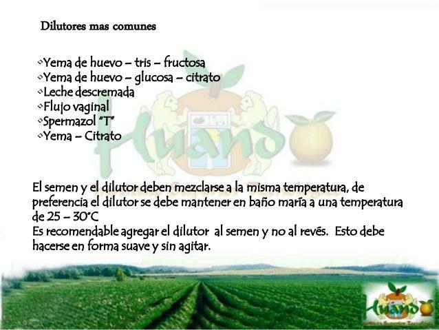 Condiciones para el servicio DEL PROPIETARIO - Poseer suficiente alimento (pastos cultivados, ensilado, heno, etc.) - Infr...