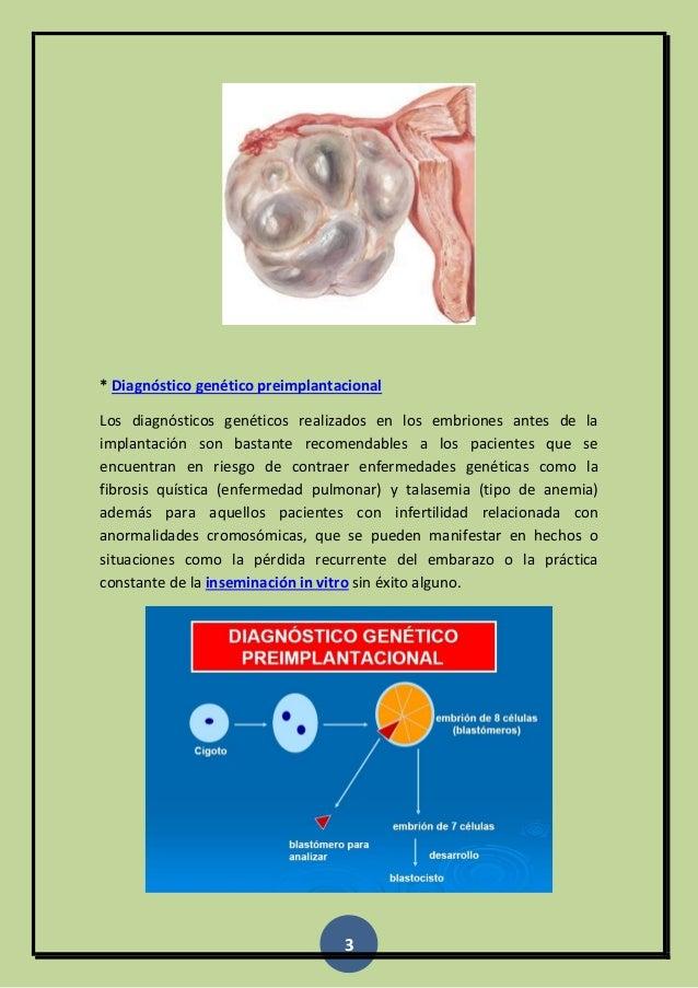 Inseminacion in vitro Slide 3