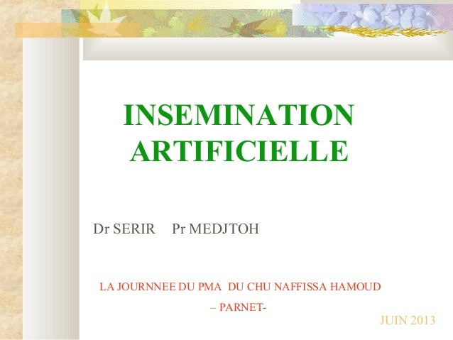 INSEMINATION ARTIFICIELLE Dr SERIR Pr MEDJTOH LA JOURNNEE DU PMA DU CHU NAFFISSA HAMOUD – PARNET- JUIN 2013