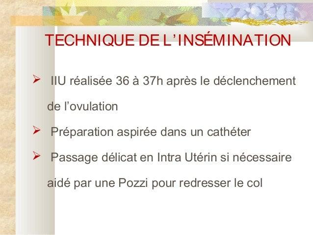 16 jours apres insemination