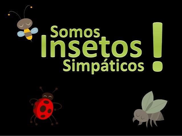Insectofobia: É o medo excessivo de insetos. Geralmente, a maior fobia é às aranhas, gafanhotos, abelhas ou vespas e escar...