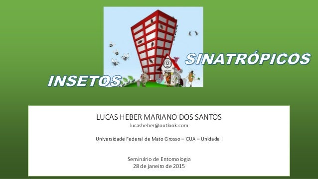 LUCAS HEBER MARIANO DOS SANTOS lucasheber@outlook.com Universidade Federal de Mato Grosso – CUA – Unidade I Seminário de E...