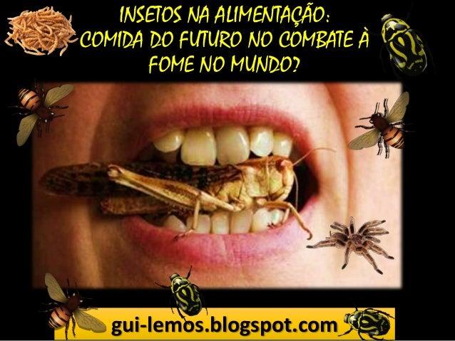 INSETOS NA ALIMENTAÇÃO: COMIDA DO FUTURO NO COMBATE À FOME NO MUNDO?  gui-lemos.blogspot.com