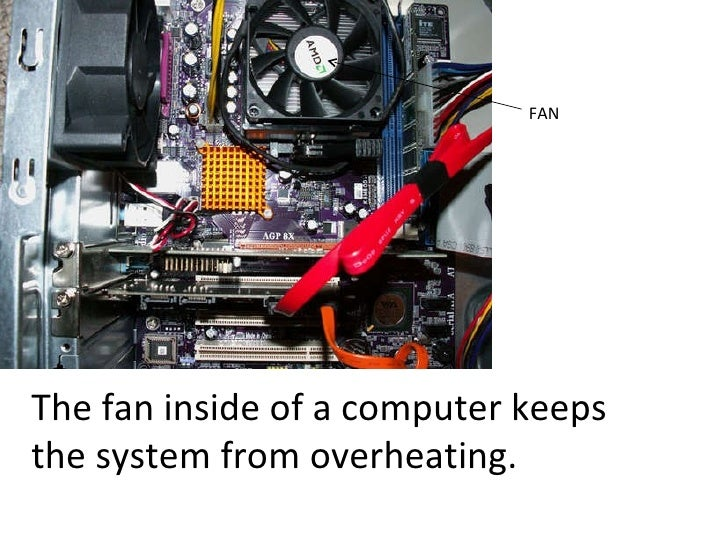 FAN The fan inside of a computer keeps the system from overheating.