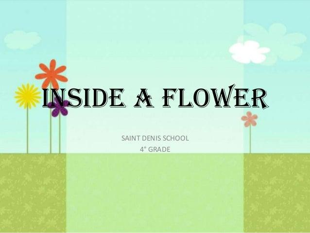 INSIDE A FLOWER SAINT DENIS SCHOOL 4° GRADE