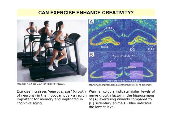 CAN EXERCISE ENHANCE CREATIVITY?                                                                                Areas affe...