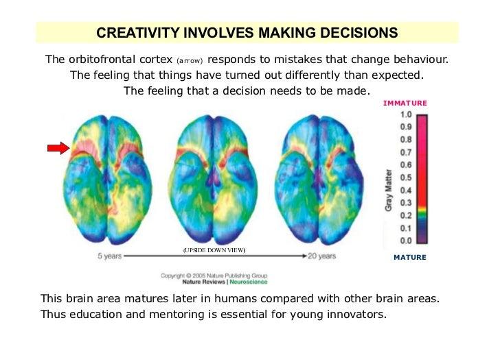 CREATIVITY INVOLVES MAKING DECISIONSThe orbitofrontal cortex (arrow) responds to mistakes that change behaviour.    The fe...