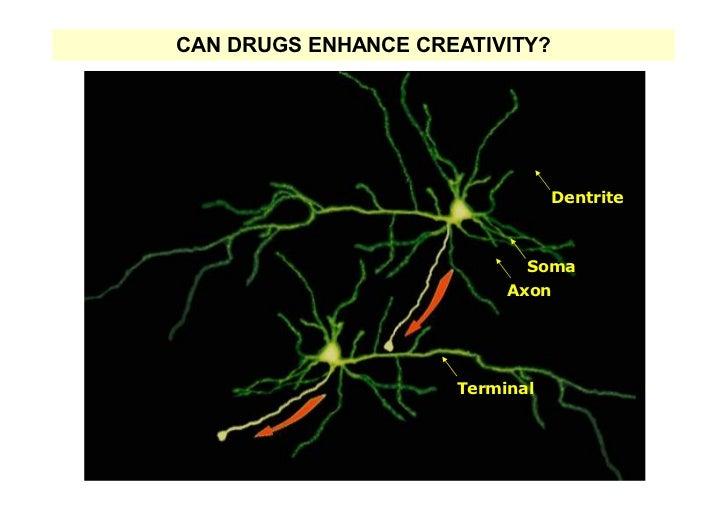 CAN DRUGS ENHANCE CREATIVITY?                                 Dentrite                            Soma                    ...