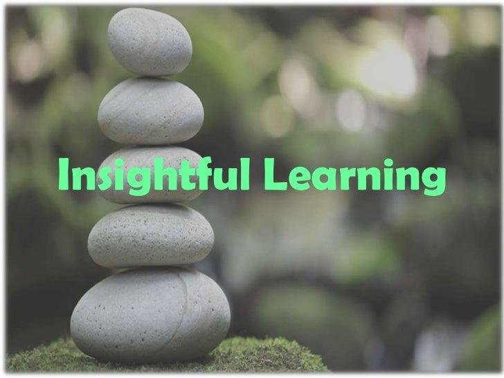 Insightful Learning