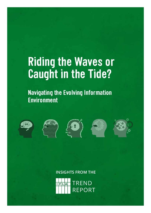Riding the Waves or Caught in the Tide? Navigating the Evolving Information Environment Insights from the