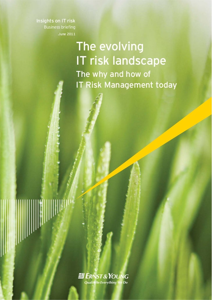 Insights on IT risk   Business briefing          June 2011                      The evolving                      IT risk l...