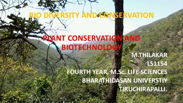 PLANT CONSERVATION AND BIOTECHNOLOGY M.THILAKAR LS1154 FOURTH YEAR, M.Sc. LIFE SCIENCES BHARATHIDASAN UNIVERSTIY TIRUCHIRA...
