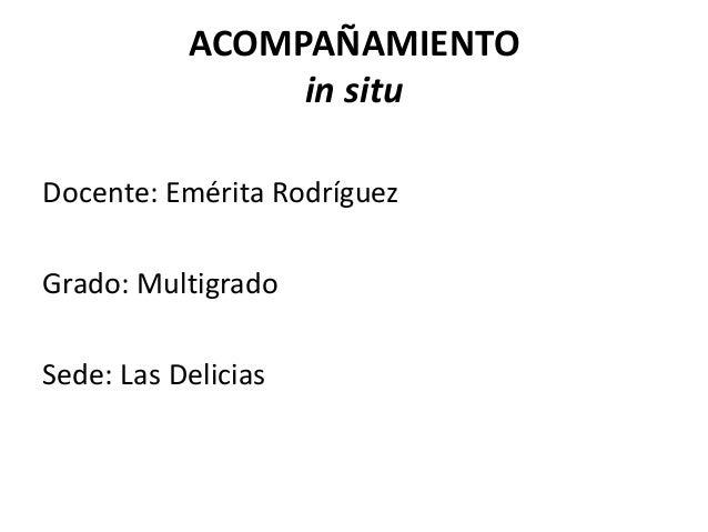 ACOMPAÑAMIENTO in situ Docente: Emérita Rodríguez Grado: Multigrado Sede: Las Delicias
