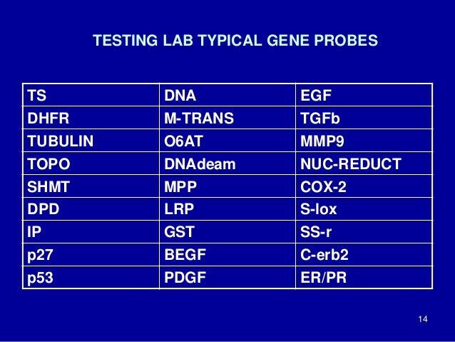 TESTING LAB TYPICAL GENE PROBES TS DNA EGF DHFR M-TRANS TGFb TUBULIN O6AT MMP9 TOPO DNAdeam NUC-REDUCT SHMT MPP COX-2 DPD ...