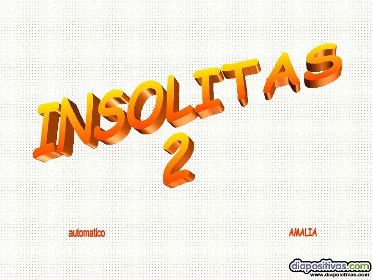 INSOLITAS 2 automatico AMALIA