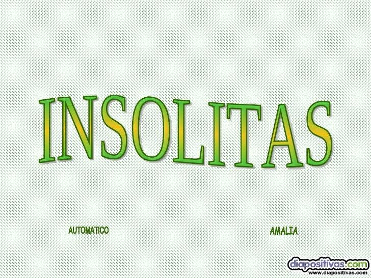 INSOLITAS AUTOMATICO AMALIA