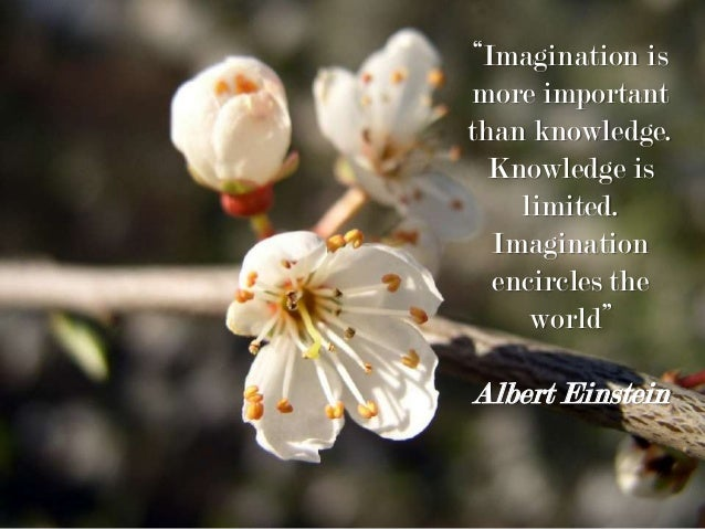 """Imagination is more important than knowledge. Knowledge is limited. Imagination encircles the world"" Albert Einstein"