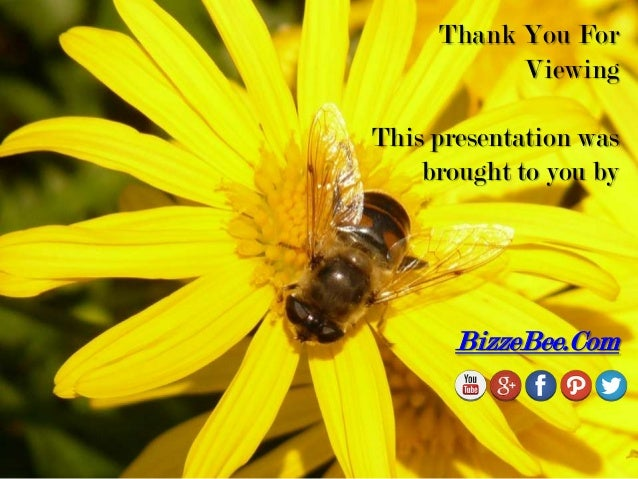 Thank You For Viewing This presentation was brought to you by BizzeBee.Com