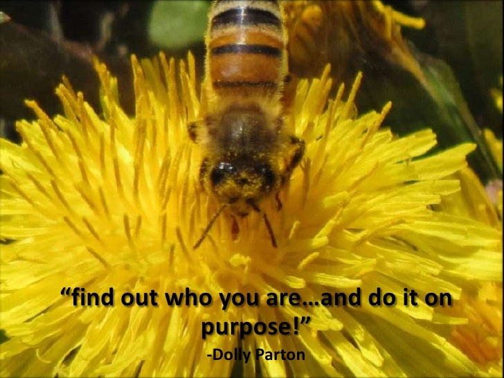"""""""find out who you are…and do it on            purpose!""""            -Dolly Parton"""