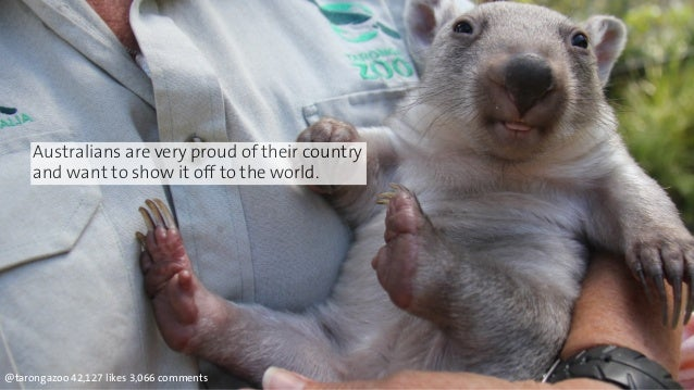 Australians are very proud of their country  and want to show it off to the world.  @tarongazoo 42,127 likes 3,066 comment...