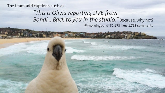 """""""This is Olivia reporting LIVE from  Bondi… Back to you in the studio.""""  @morningbondi 52,173 likes 1,713 comments  The te..."""