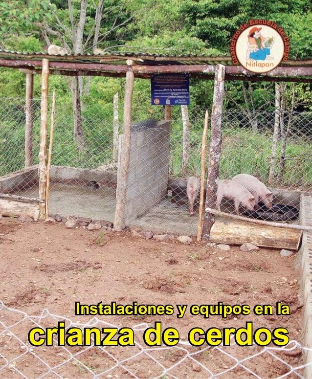Instalaciones y equipos en la crianza de cerdos Instalaciones y equipos en la crianza de cerdos