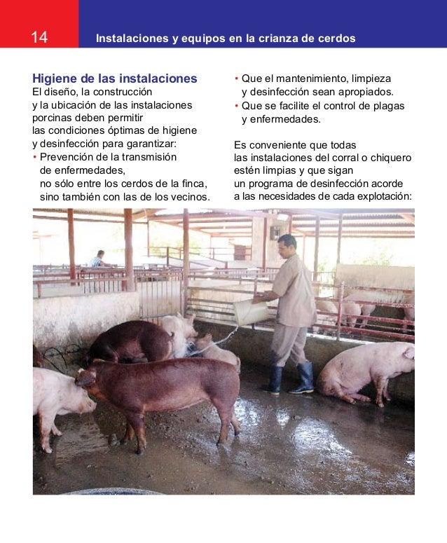 Instalaciones equipos crianza de cerdos Limpieza y desinfeccion de equipos