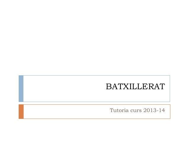 BATXILLERAT Tutoria curs 2013-14