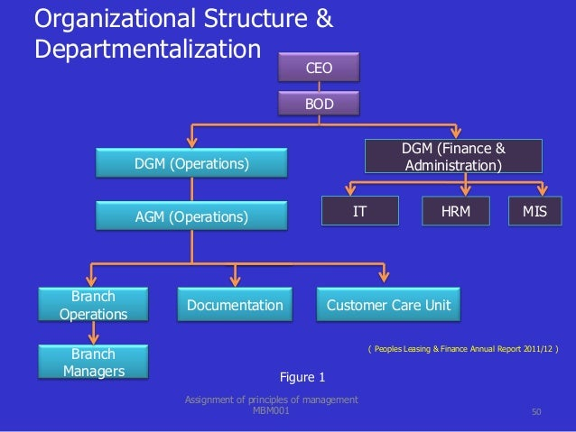 organization structure functional departmentalization The 6 building blocks of organizational structure 1) if an organization has rigid departmentalization  is said to have a functional organizational structure.