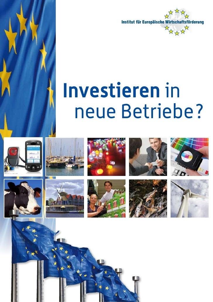 Institut FüR EuropäIsche WirtschaftsföRderung, 2e Correktur