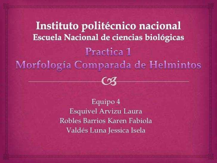 Equipo 4  Esquivel Arvizu LauraRobles Barrios Karen Fabiola Valdés Luna Jessica Isela