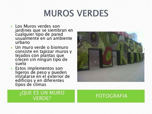 Alternativas en construccion muros for Tipos de muros verdes