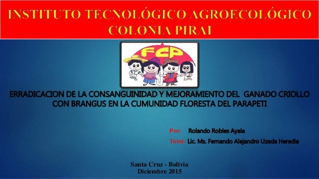 ERRADICACION DE LA CONSANGUINIDAD Y MEJORAMIENTO DEL GANADO CRIOLLO CON BRANGUS EN LA CUMUNIDAD FLORESTA DEL PARAPETI Sant...
