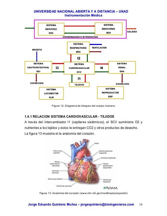 Instrumentación Médica. Bioinstrumentación.