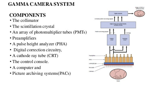 Nuclear medicine system block diagram wiring diagram nuclear medicine instrumentation and quality control presentation communication system diagram 16 gamma camera system ccuart Image collections