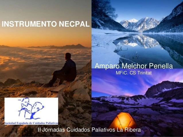 II Jornadas Cuidados Paliativos La Ribera INSTRUMENTO NECPAL Amparo Melchor Penella MFiC. CS Trinitat