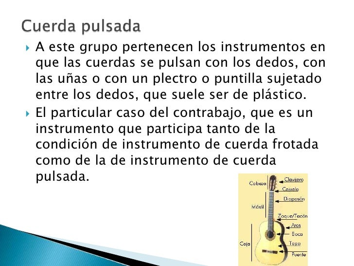 Instrumentos cord fonos y sus tipos 1 - Tipos de cuerdas ...