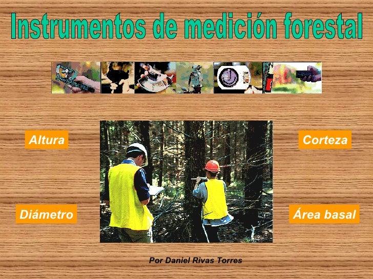 Diámetro Altura Corteza Área basal Instrumentos de medición forestal Por Daniel Rivas Torres