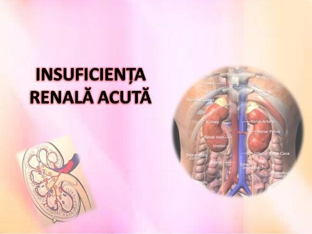 Cuprins• Ce este insuficiența renală acută (IRA)?• Cauzele apariției IRA;• Simptome;• Diagnosticarea IRA;• Tratament;• Die...