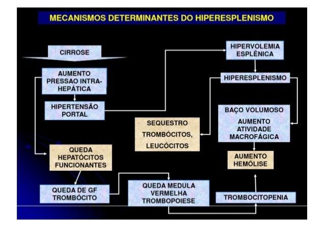 Encefalopatia Hepática •Fatores desencadeantes: • Excesso de proteína na dieta • Infecção • Hemorragia digestiva alta • In...