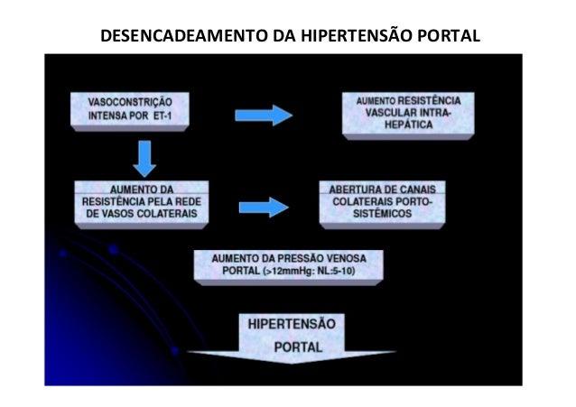 PP = 3 mmHg PP = 4 mm Hg Fluxo Portal = 800 ml/min ( Jejum ) Fluxo Portal = 1.500 ml/min ( Pós prandial ) devido à dilataç...