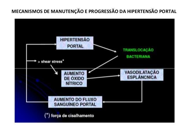 Um aumento de fluxo sangüíneo portal na cirrose hepática (por exemplo) produz grande aumento da Pressão Portal PP = 10 mmH...