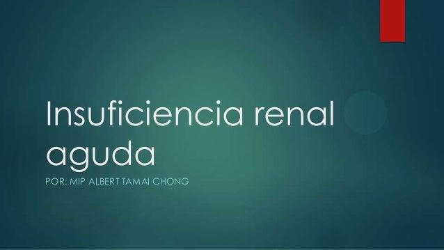 Insuficiencia renal aguda en pediatria Slide 1